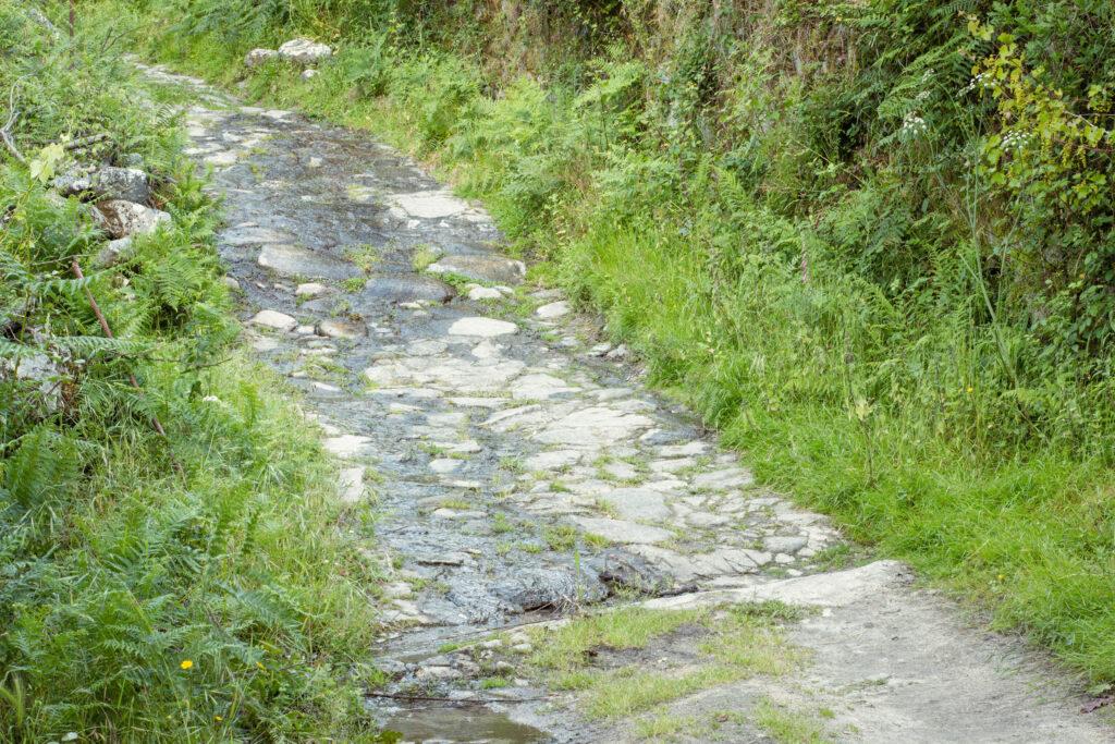 Calçada Romana Avo